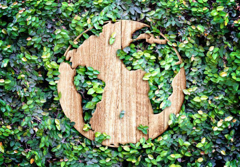 empresas-carbono-neutral-en-costa-rica-1